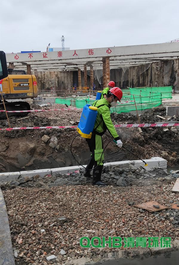 清青环保:深圳的各类白蚁分飞时间