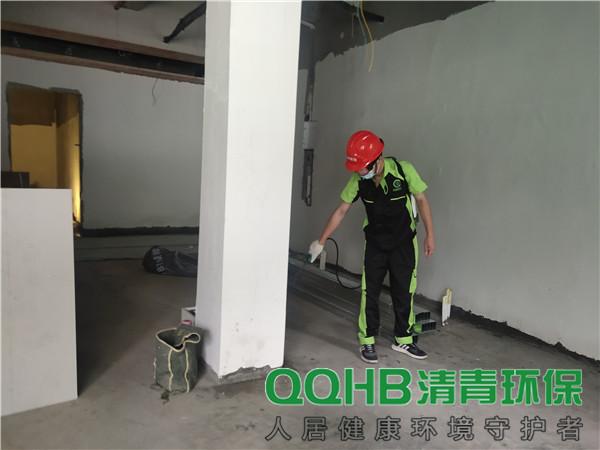 深圳粤海街道公共综合服务中心白蚁防治服务墙体