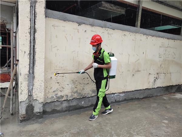 清青环保:白蚁防治的方法(一)
