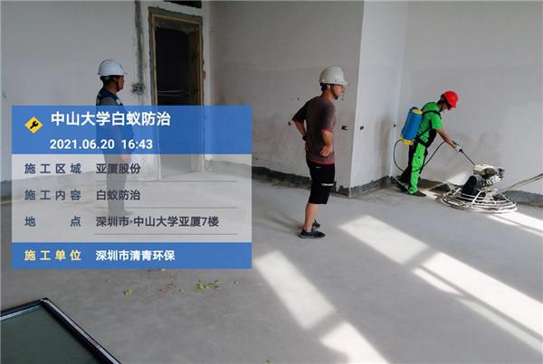 清青环保:白蚁防治工程过程中的几点注意事项