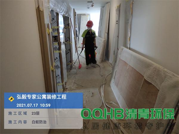 深圳弘毅公寓白蚁防治1