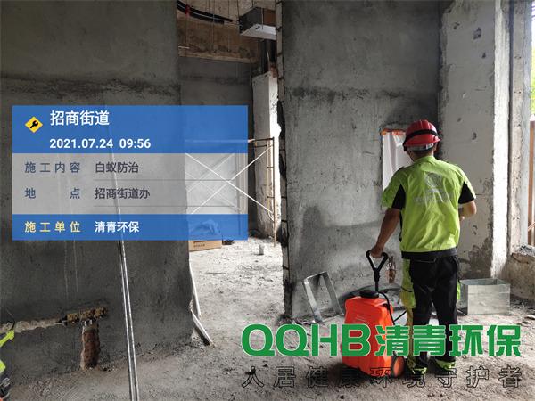 深圳招商街道办白蚁防治6
