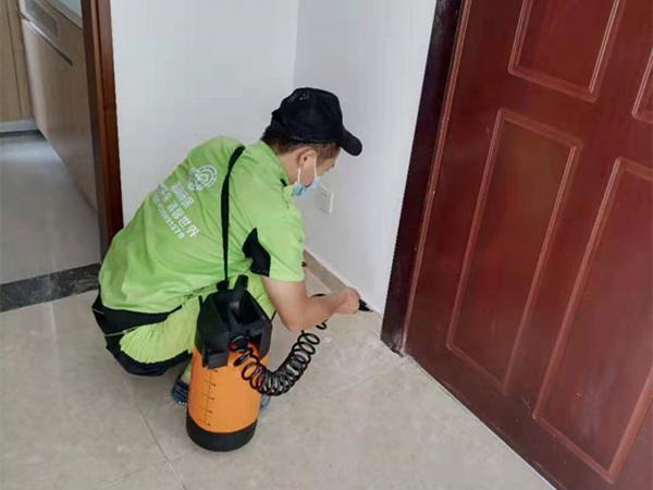 深圳领航城小区张先生家里白蚁防治服务